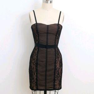 BCBG Maxazria Mini Janna Dress Bodycon Nude Lace